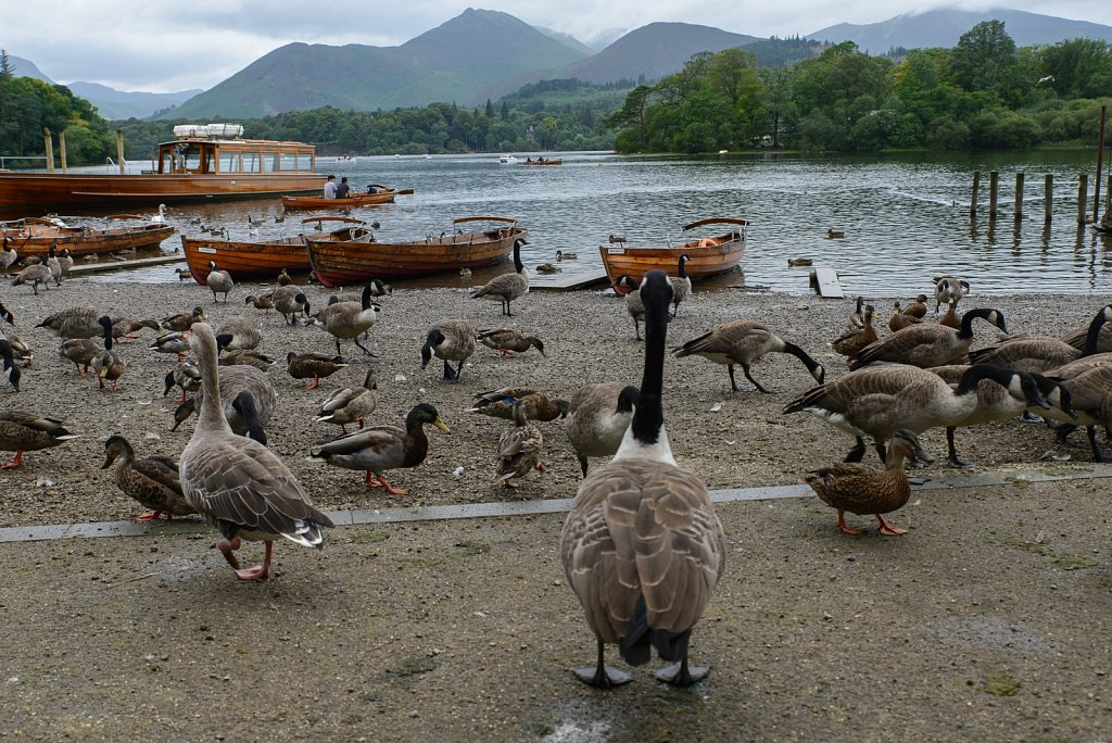 Keswick. England. United Kingdom.