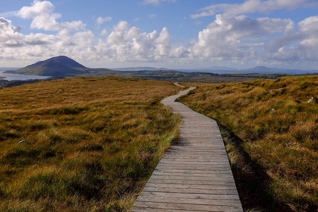 Connemara National Park. Shanaveg. County Galway. Ireland.